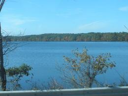Beautiful Walden Pond , MinnieMouse - November 2013