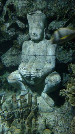 Underwater Statues, Josh - February 2015