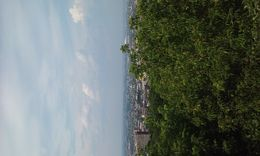 I did the Montreal city sghtseeing tour. I visited St Josephs Oratory Notre Dame Basilica and saw Montreal from Mount Royal top. , Bill - July 2016