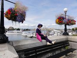 Plenty of spots for photos with the over 1600 hanging flower baskets citywide , John C - August 2011