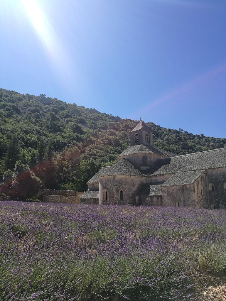 Lavender Route Small-Group Day Trip from Avignon
