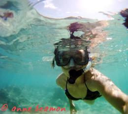 Anne Beamon: Hanauma Bay.........Hi, anne beamon - May 2010