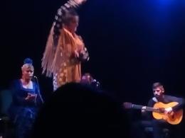 Flamenco show, City Hall, Barcelona, Flamenco show, City Hall, Barcelona , Patricia L - October 2016