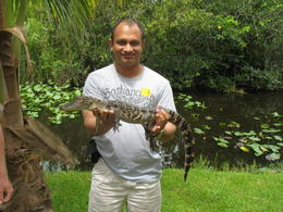 Raphael holding an Alligator in the Florida Everglades. , Ralph - August 2012