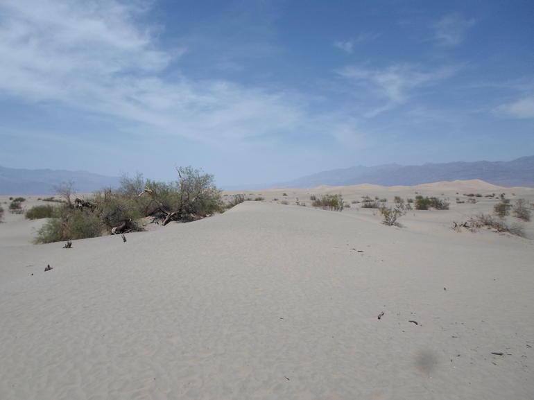 Sand Dunes - Las Vegas