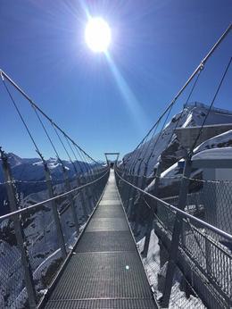 Suspension Bridge , Irene B - November 2016