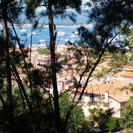 Day Trip to Hyères Le Lavandou and Saint Tropez from Marseille, Marsella, FRANCIA