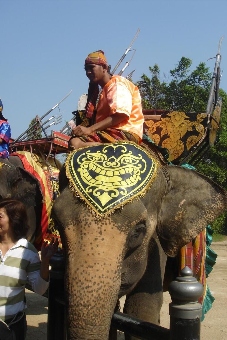 Elephant show - Bangkok