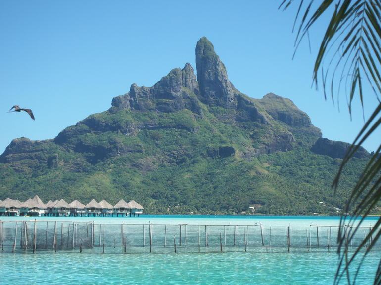 Lagoonarium - Bora Bora