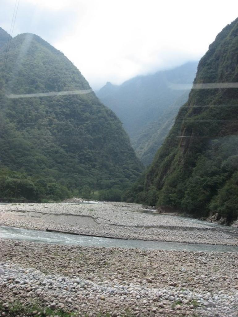 Lush Jungle - Cusco