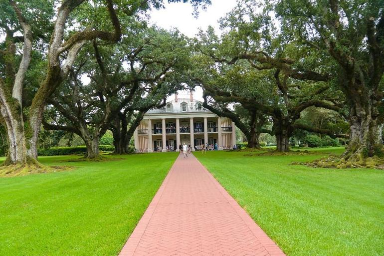 Oak Alley Plantation Tour photo 31