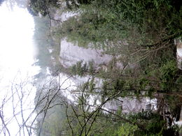 Shannon Falls - 3rdhighest falls. , Lorraine - February 2015