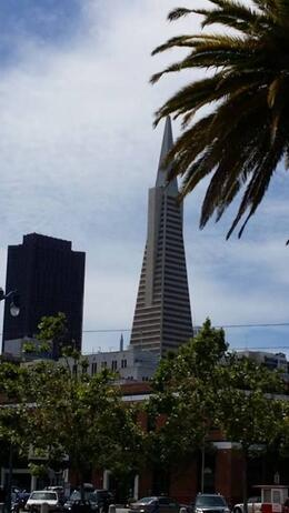 One of several views of the Transamerica Pyramid , Mickie C - May 2014