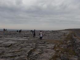 The Burren , Rosa F - December 2016