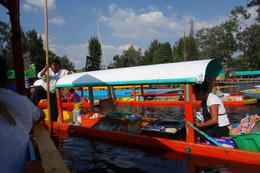 In Xochimilco , Debashis C - January 2017