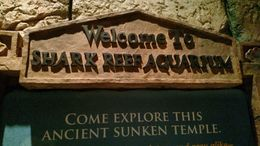 Welcome sign to the reef!, Josh - February 2015