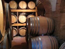 French Oak casks, Chianti vineyard tour, Gale S - May 2010