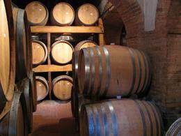 French Oak casks, Chianti vineyard tour, Gale S - May 2010