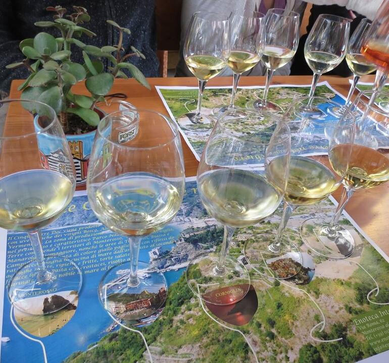 Wine tasting in Monterosso - Florence