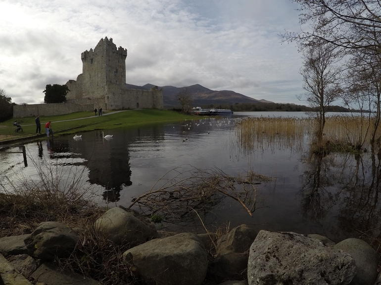 Jaunting Car Tour to Ross Castle from Killarney photo 9