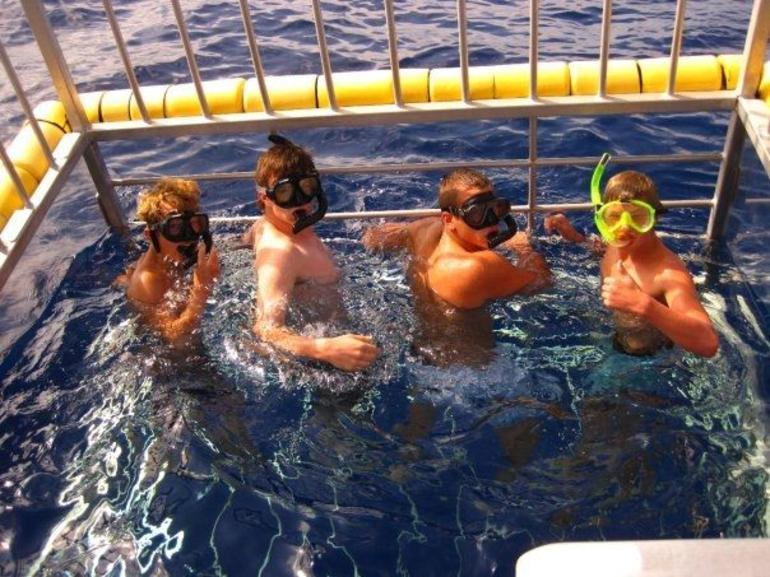Brave Divers! - Oahu