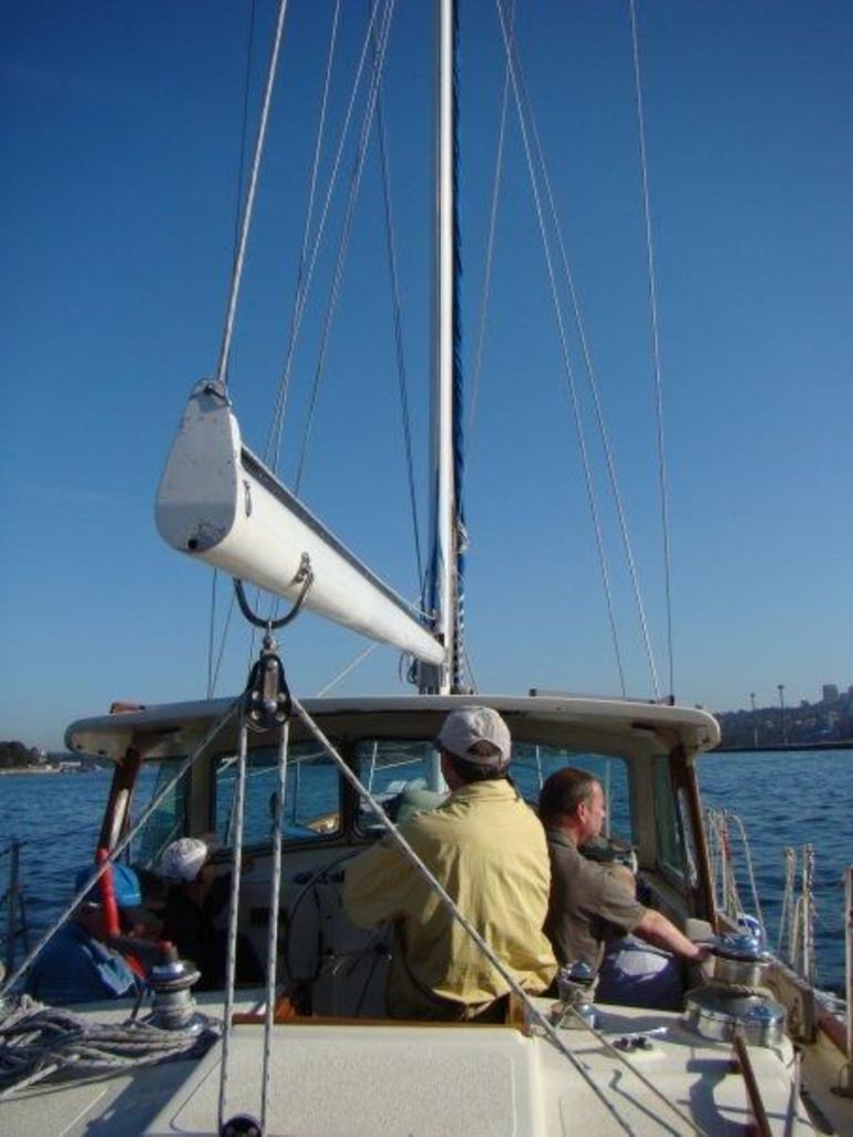 Sydney whale watching yacht - Sydney