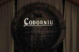 Codorniue barrel in the winery's museum, Elizabeth D - February 2009