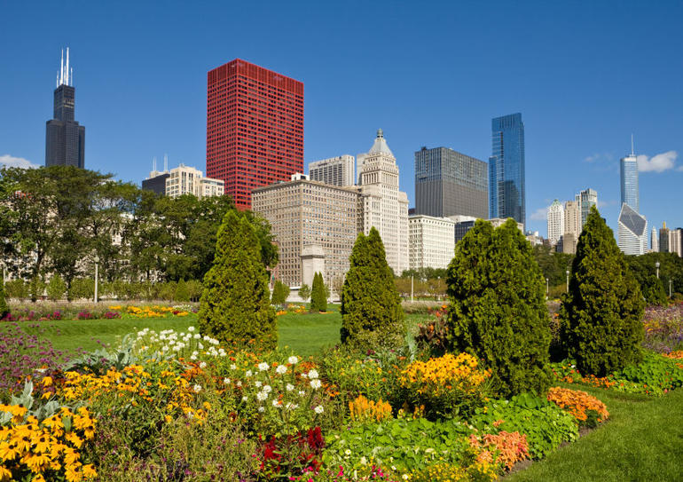 Downtown Chicago with Sears Tower and Grant Park - Chicago