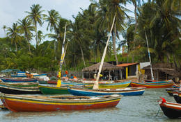 A Brazilian fishing village - May 2011