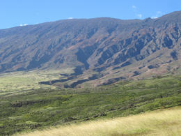 Green grassland south of Hana - May 2013