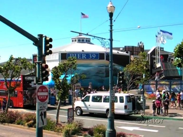 Pier 39, San Francisco - San Francisco