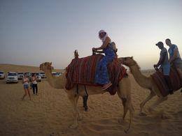 viagem no camelo denominado Champanhe , Liliana O - June 2016
