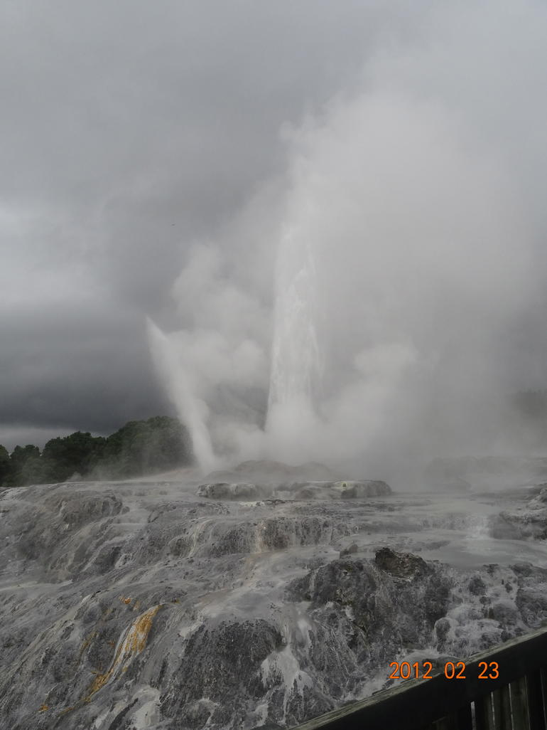 Rotorua Full Day Tour: Waitomo Caves, Agrodome and Te Puia departs Auckland photo 28