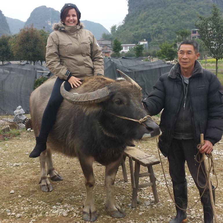 Me riding a Water Buffalo - Guilin