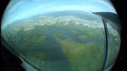 above the rainforest! - February 2012