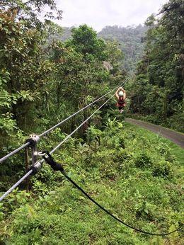 The adrena-line was the longest of the ziplines we went on!, Katiemo - May 2015