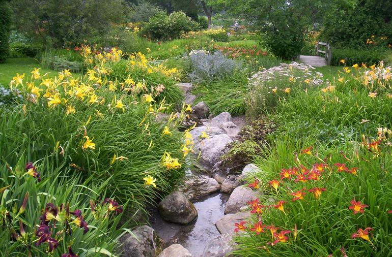 Montreal Botanique Garden Flowers - Montreal