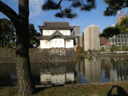Imperial Palace Garden, Bonnie - December 2010