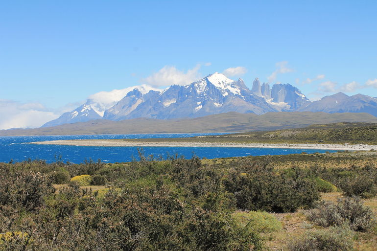 Full-Day Tour to the Torres del Paine National Park photo 33