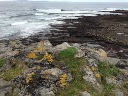 Ocean view at the Burren , Kayla M - December 2016