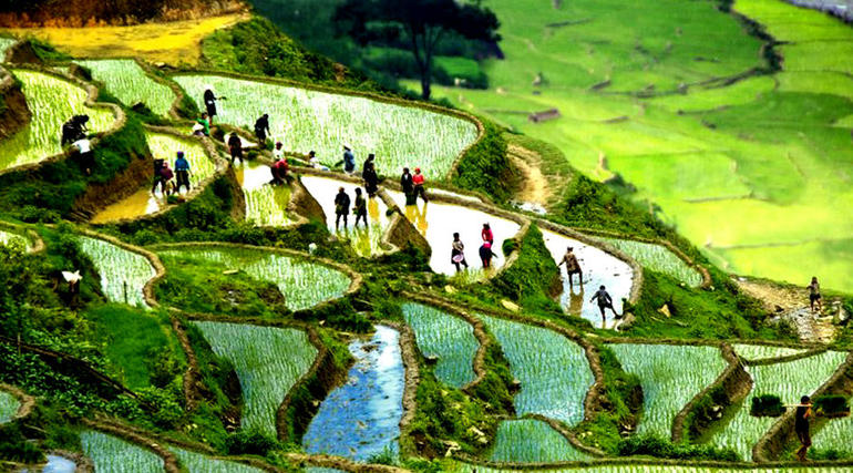 Sapa Trekking Tours - 2 Days 1 Night Stay At Homestay photo 24