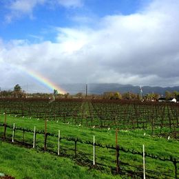 Chasing rainbows in Sonoma landscapes , Natalia V - February 2016