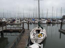 Off the Pier., ROD C - November 2011