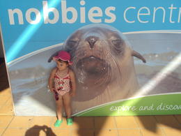 my beautiful daughter at the Nobbies and the Koala's it was so beautiful and we were very lucky it was a beautiful w/e , kathryn k - April 2014