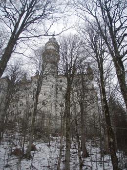 Neuschwanstein., Mateelee R - February 2009
