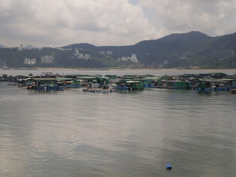Sam Mun Tsai Fish Farming - Hong Kong