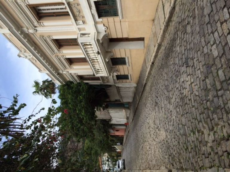 Best of Rio: Secrets of Santa Teresa and Lapa Steps photo 19