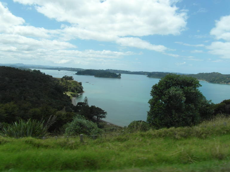 Matakana Coast and Country Tour (private vehicle and guide)
