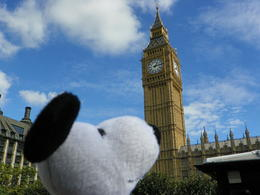 snoopy checks out big Ben , Jimmy T - October 2011