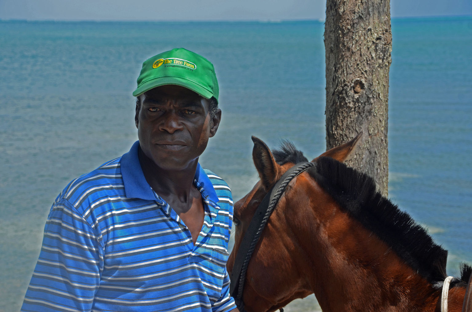 MAIS FOTOS, Roatan Combo Tour: Jungle Horseback Riding and Beach Break